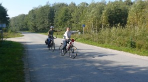 dviratis_15_.jpg