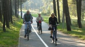 dviratis_6_.jpg